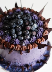 midnight-blueberry-cake